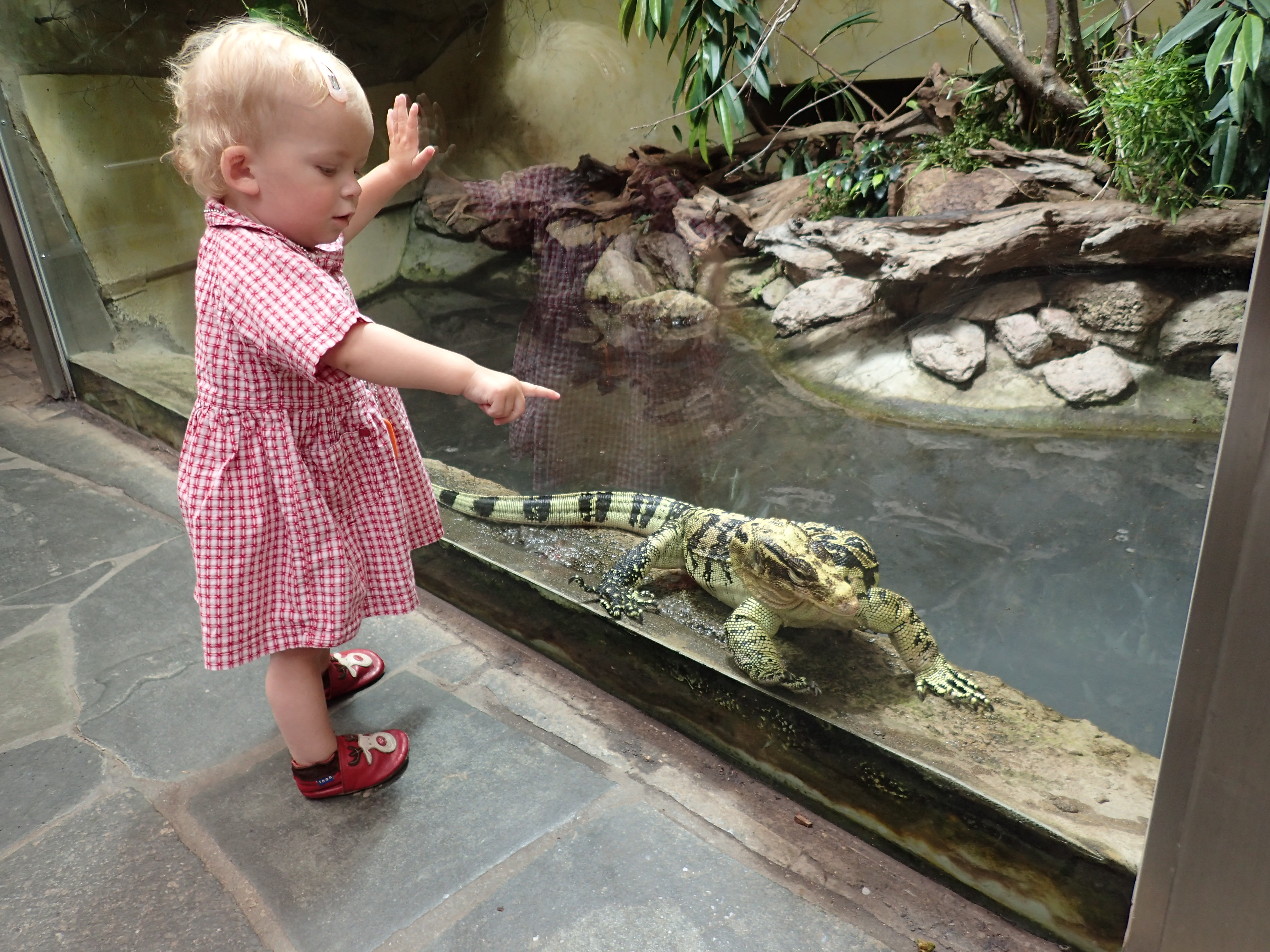 Ene Besuch em Zoo - un noch ene - un noch ene