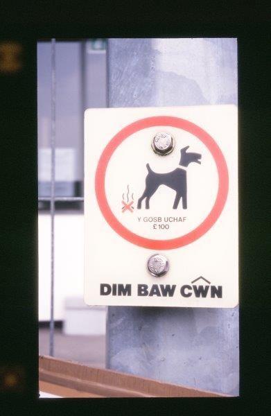 Darf man Hunden eigentlich Feuer unterm Hintern machen?