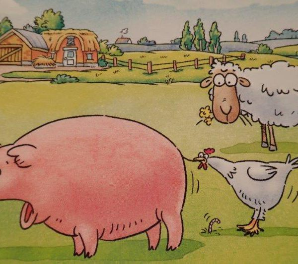 Kuh & Co. - Ein tierisch lustiges Würfelspiel