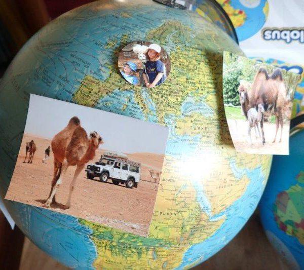 Weltreise im Küchenschrank