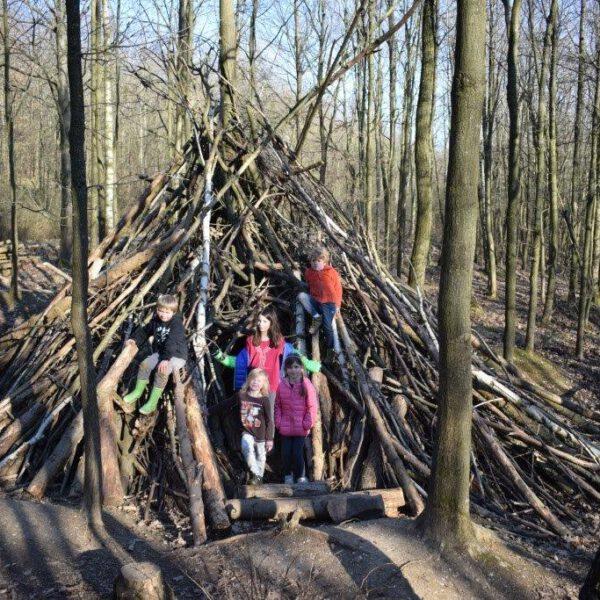 Ausflugstipp: Naturerlebnispfad Sophienhöhe